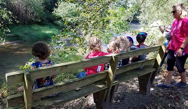 Field Activity (for PreK/K only)